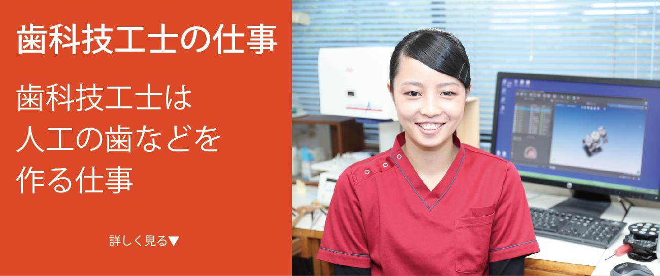 歯科技工士は人工の歯などを 作る仕事