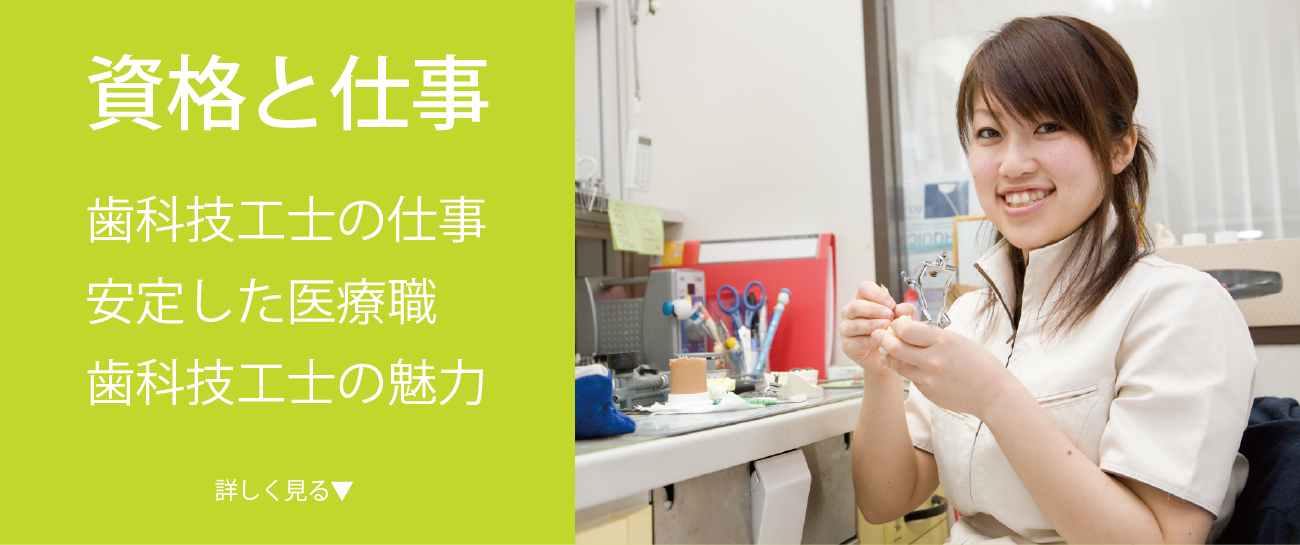 資格と仕事。歯科技工士の仕事、安定した職業、歯科技工士の魅力
